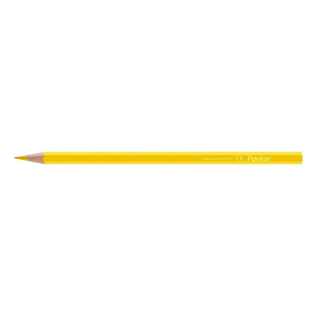 تصویر مداد رنگی 12 رنگ پنتر   جعبه فلزی