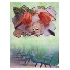 تصویر پوشه A4 پاپکو مدل گل