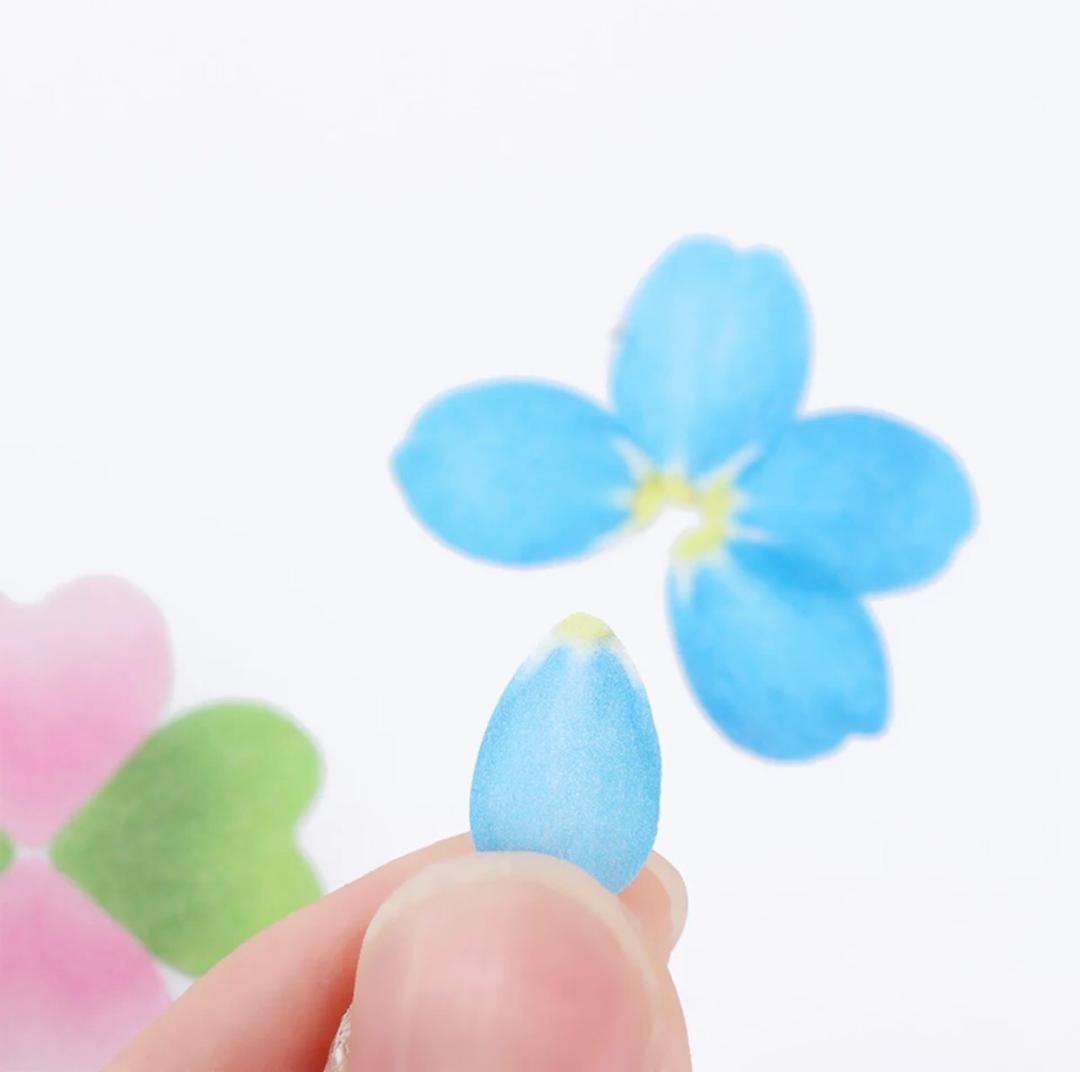 تصویر چسب گل برگ