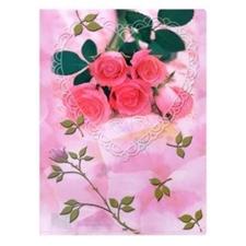تصویر پوشه A4 پاپکو بسته 4 عددی طرح گل و دریا