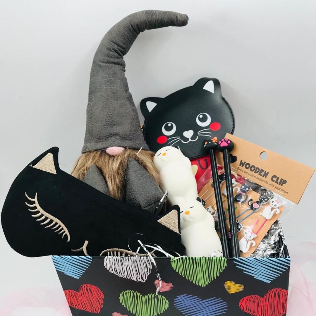 تصویر باکس هدیه گربه 017
