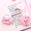 تصویر غلط گیر نواری خوک Pink Pig مدل CT-3486